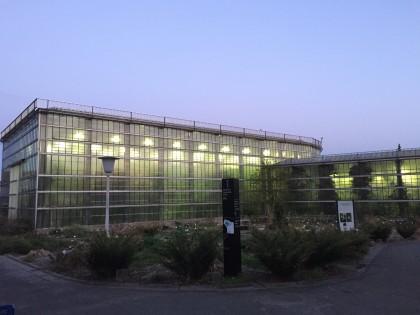 serres-avond-plantentuin