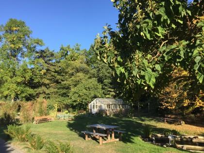 kleine-serre-buitentuin-plantentuin